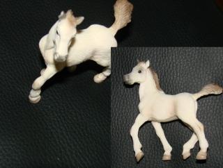Weißes Pferd Schimmel Lipizzaner Stute
